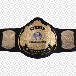 Championship Belts-BW:2027